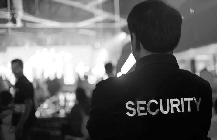 back view of security